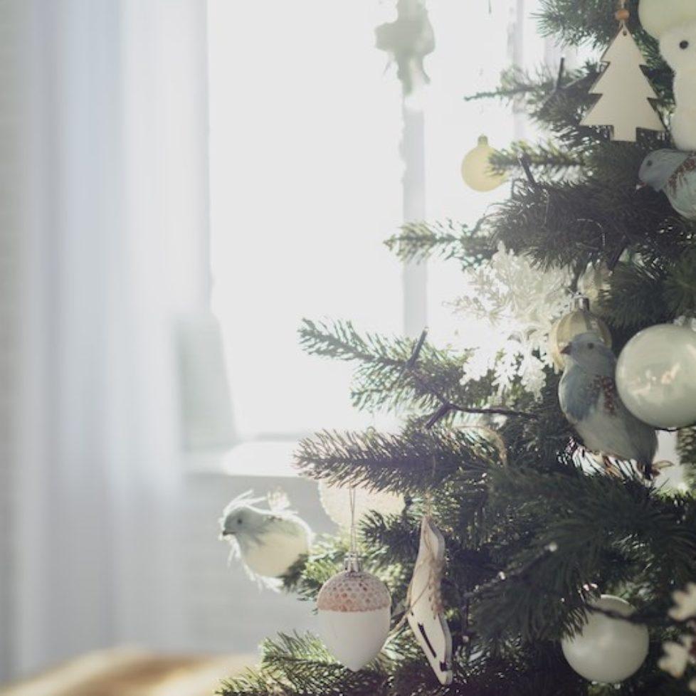 Bartley_Glass_Christmas_2017